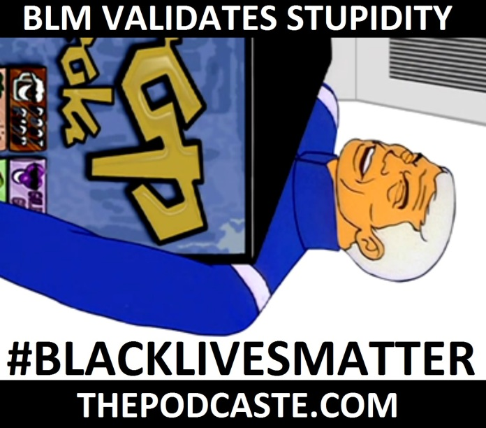 BLM validates stupidity